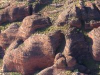 Day Tours from Kununurra